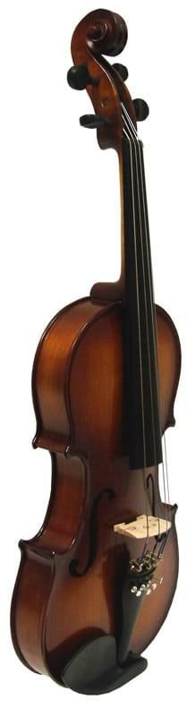 Hamburg 500 Viola