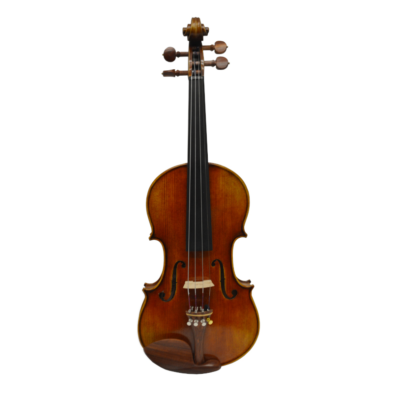 Vienna Strings Munich Ltd Edition 4/4 Violin Outfit