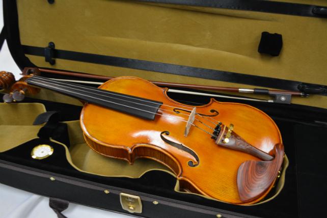 Vienna Strings Munich Ltd Edition 4/4 Violin Outfit
