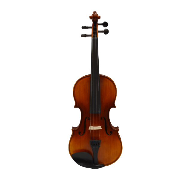 Vienna Strings Violin 4/4 European tradition Model 300