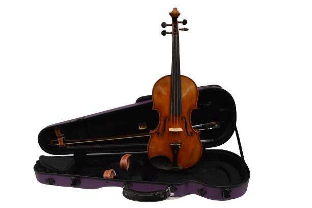 Vienna Strings Violin 4/4 European tradition Berlin Special
