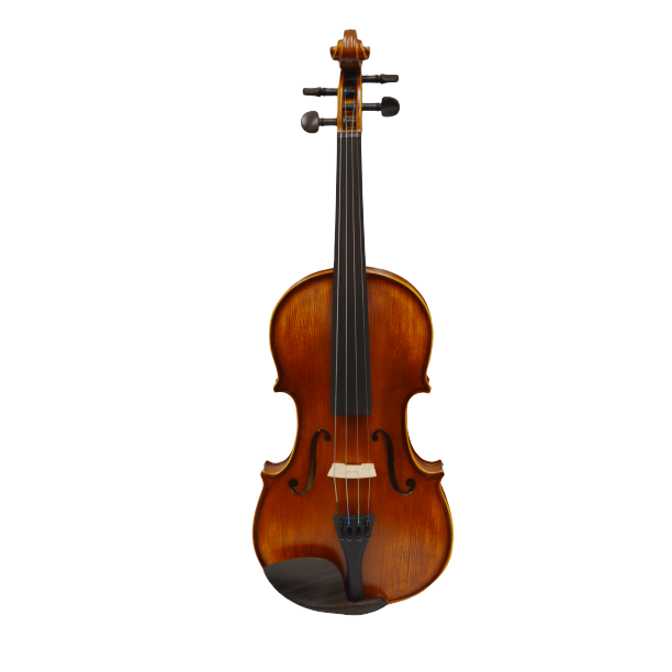 Vienna Strings European tradition Model 200